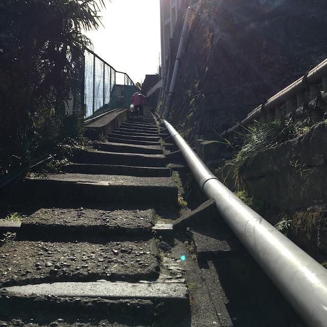 野毛山公園までの階段は容赦なし