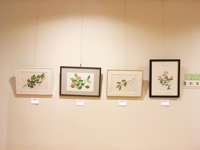 植物画教室作品展示風景