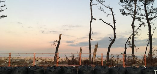 金沢工業団地台風15号と19号被害
