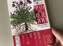 里山の草花100